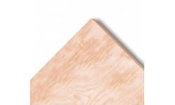 Radiata Pine Plywood B/C